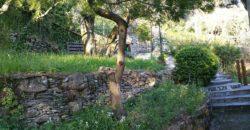 S.Ilario – Via dei Tasso