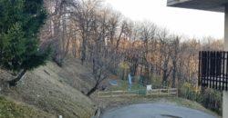 San Giacomo di Roburent – Via Pianfei
