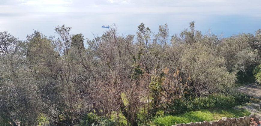 S.Ilario – Via Dei Marsano