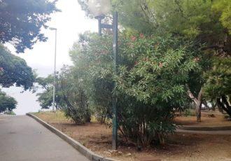 Quinto – Via Gianelli