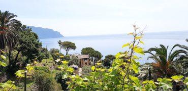 Pieve Ligure – Via Caduti Pievesi